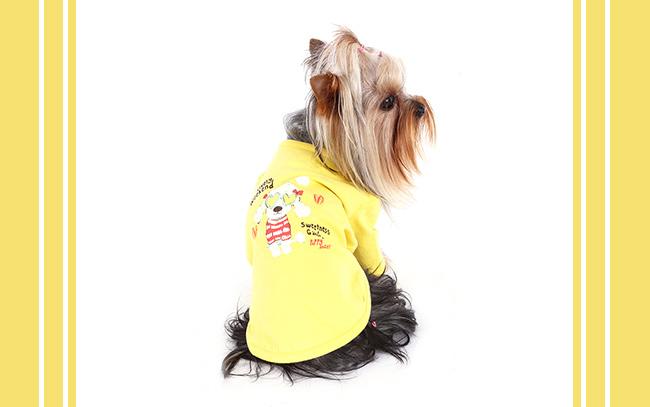 Hunde_Schleifen