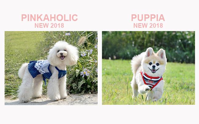 puppyangel_2018